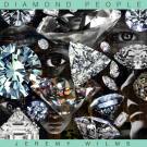 Jeremy-Wilms-Diamond-People